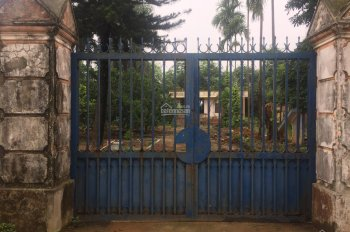 Cần bán lô đất 2000m2 đã có khuôn viên nhà vườn view mặt hồ tại xã Phú Cát, Quốc Oai, Hà Nội