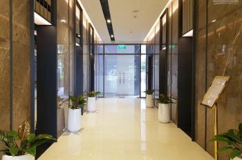 Cho thuê căn hộ C/C cao cấp Horizon Tower Quận 1. DT 110m2, 2PN, full NT, giá: 18tr/th 0909130543