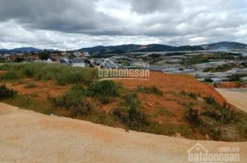 Bán đất nở hậu tại Bạch Đằng, phường 7, Đà Lạt