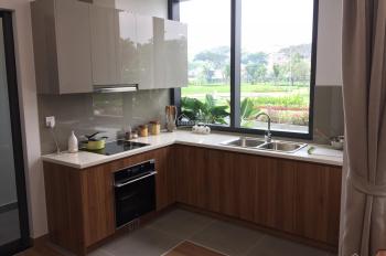 Cần tiền kinh doanh tôi bán lỗ căn hộ Eco Green 2PN 66m2 - Giá 3,2 tỷ - Đóng 10% - 0939 99 60 79