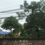 Cần bán lô đất mặt đường đại lộ Thăng Long. Dt 6600m2 mặt tiền 66m rất đẹp