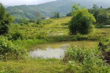 Bán rẻ lô đất trang trại nhà vườn tại Lương Sơn