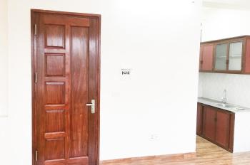 Cho thuê căn hộ ở chung cư mini 6 tầng có thang máy