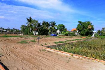 Gia đình cần tiền bán gấp lô đất mặt tiền Hưng Long, Bình Chánh. DT: 1000m2, LH: 0914763249 - Điệp