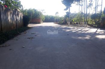 Bán 2.2 mẫu đất có nhà CLN xã Long Phước, Long Thành, gần tập đoàn Vingroup 1.35tr/m2
