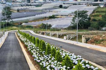 Sở hữu đất nền trung tâm TP Đà Lạt, cạnh Thung Lũng Tình Yêu, đã có sổ đỏ giá từ 34tr/m2