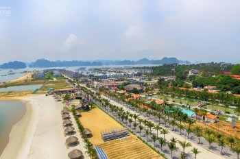Bán đất ở, biệt thự, khách sạn, đầu tư đảo Tuần Châu - Hạ Long - Quảng Ninh