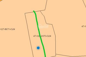 Đất xã Ngọc Định, Định Quán, 1300m2, chỉ 85 triệu