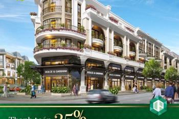 Cơ hội sở hữu Golden shophouse - thanh toán cực linh hoạt 25%/18 - 24 tháng