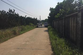 Nhà phân phối BĐS công ty Đất Vàng cần chuyển nhượng lô đất 4000m2, 400m thổ cư. Yên Bài, Ba Vì