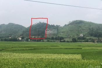 Bán mảnh đất 9,000m2 - đất đẹp cách ngã tư Hòa Lạc 3km