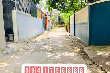 Bán 65m2 đất đấu giá tại Chi Đông, Lệ Chi, Gia Lâm, Hà Nội đường ô tô vào nhà giá rẻ LH 0941796888