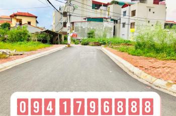 Bán 75m2 đất đấu giá tại Lệ Chi, Gia Lâm, Hà Nội đường trải nhựa oto tránh nhau rẻ LH 0941796888