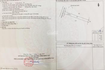 Bán đất đường Nguyễn An Ninh, Xuân Lộc, Đồng Nai, 7x81m, giá tốt nhất khu vực
