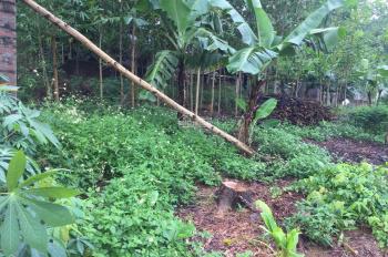 Bán đất thổ cư thuộc xã Hợp Hòa 5400m2