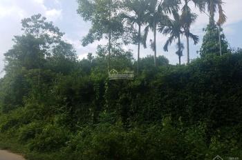 Bán 1,8ha tại Yên Trung, Thạch Thất, HN, đất mặt đường 446, view thoáng đẹp, gần Thác Bạc Suối Sao