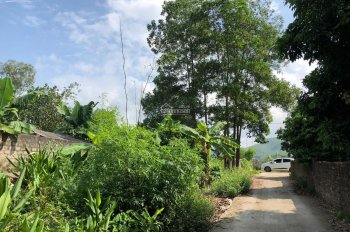 Bán mảnh đất dân 1644,5m2 ngay gần tái định cư Thôn Làng - Hoành Bồ giá đầu tư