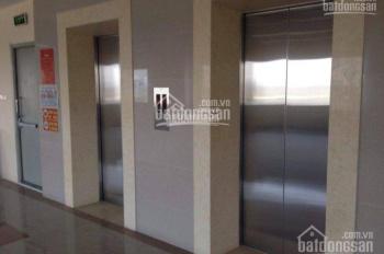 Mặt bằng sàn thông đẹp khu vực Hoàng Cầu, Cát Linh, 150 - 220 m2 giá rẻ 200 nghìn/m2/th