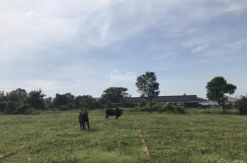 Cần bán miếng đất ngay chợ Mỹ Hạnh Nam ngay Tỉnh Lộ 824 vào 100m, sổ hồng riêng