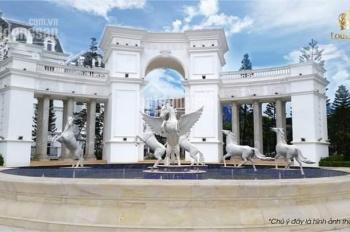 Phân phối biệt thự liền kề dự án Louis City Đại Mỗ Nam Từ Liêm Hà Nội, LH: 0961.556.996