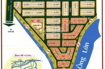 Cần bán nền biệt thự 250m2 khu dân cư Việt Kiều 6B Bình Hưng, Bình Chánh