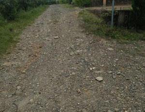Cần bán 6000m2 đất vườn cafe Đức Trọng, Lâm Đồng