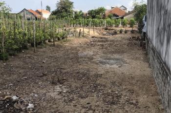 Bán đất nông nghiệp có sổ 100m2 giá 300 triệu ở Phú Yên