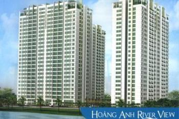 Cho thuê căn hộ chung cư tại dự án Hoàng Anh River View, Quận 2, Hồ Chí Minh diện tích 162m2