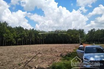 Bán đất xã Minh Thắng, huyện Chơn Thành, 450m2 mặt tiền đường nhà nước