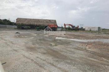 Cho thuê khu đất làm nhà xưởng 10000m2 đến 40000m2 trong KCN Phú Mỹ 1, Bà Rịa Vũng Tàu