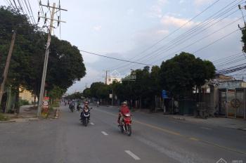 Chính chủ cần bán gấp miếng đất MT Nguyễn An Ninh, TX Dĩ An