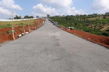Cần bán lô đất ở Bảo Lâm diện tích 5x20m giá 300tr