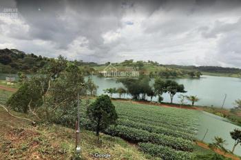 Bán đất ngay trung tâm thành phố Bảo Lộc, khu dân cư - DT 135m2 giá chỉ 350tr/lô