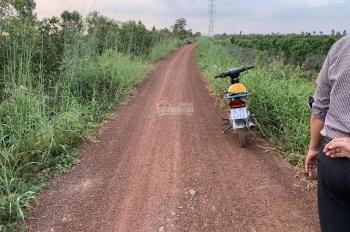Cần bán đất thổ xã Hòa Khánh Đông, huyện Đức Hòa, Long An