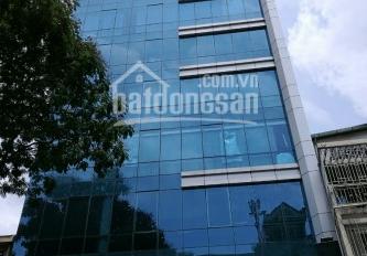 Building văn phòng MT Nguyễn Văn Thủ, Đa Kao, Quận 1. DT 8x20m, 6 lầu TM, giá 99,9 tỷ 0902011809