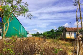 Bán đất mặt tiền QL 20, Phú Hội, Đức Trọng, Lâm Đồng. DT: 1.700m2