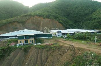 Cần bán trang trại thiết kế hiện đại nhất đang chăn 3000 con lợn tại Trường Sơn, Lương Sơn, DT 16ha