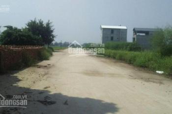 Cần bán nhanh lô đất đấu giá tại thôn Đại Tài, Nghĩa Trụ, Hưng Yên