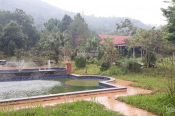 Cần bán khu nghỉ dưỡng cao cấp DT: 12ha tại Tiến Xuân, Thạch Thất, Hà Nội
