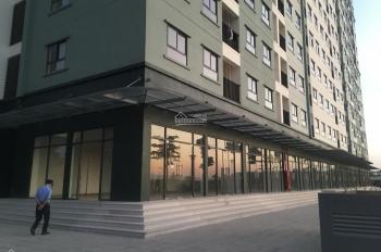 Bán kiot vị trí đẹp để kinh doanh - đầu tư tòa 19T1 - Lucky House Kiến Hưng - LH: 0847.988958