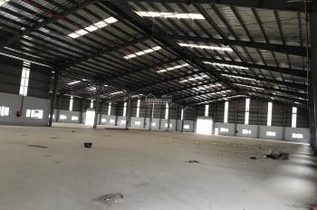 Cần cho thuê kho xưởng 2600m2 mới xây dựng ngay KCN Vĩnh Lộc 2, Bến Lức, Long An