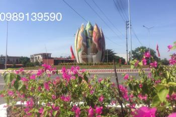 Bán nhà liền kề giá gốc hợp đồng dự án Ecopark - Ecorivers Hải Dương, LH 0989139590