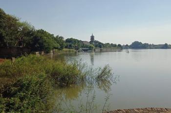 Siêu cực phẩm bám mặt hồ Hòa Thạch hơn 30m, cách đường DH09 chỉ 400m, LH: 0388388586