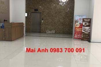 Cho thuê CH chung cư 317 Trường Chinh căn 75m2, 2 pn điều hòa tủ bếp đầy đủ giá 12 tr/th 0983700091