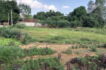 Nhượng QSD 2100m2 đất trang trại nhà vườn tại thôn Đồng Bèn, Đông Xuân, Quốc Oai