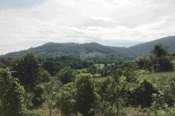 Bán 36m mặt đường lối đi vào Ao Vua, SĐ view cánh đồng tầm nhìn rộng, chỉ cách Ao Vua khoảng 1km