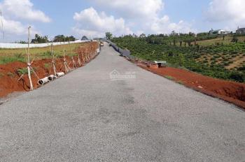 Đất nền giá rẻ 3xx triệu/nền 135m2 SHR từng nền, full thổ, sang tên trong tuần