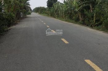 Bán 1263m2 đất mặt tiền Lê Đình Chi, Lê Minh Xuân, Bình Chánh