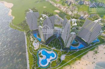 Dự án Ninh Chữ Sailing Bay, giá đầu tư tốt nhất lợi nhuận cao