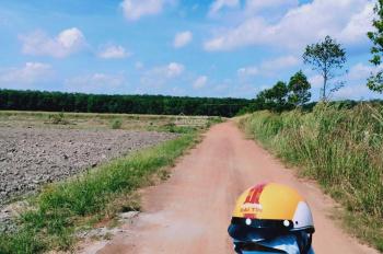 Bán đất chính chủ mặt tiền ngay khu công nghiệp Becamex Chơn Thành Bình Phước